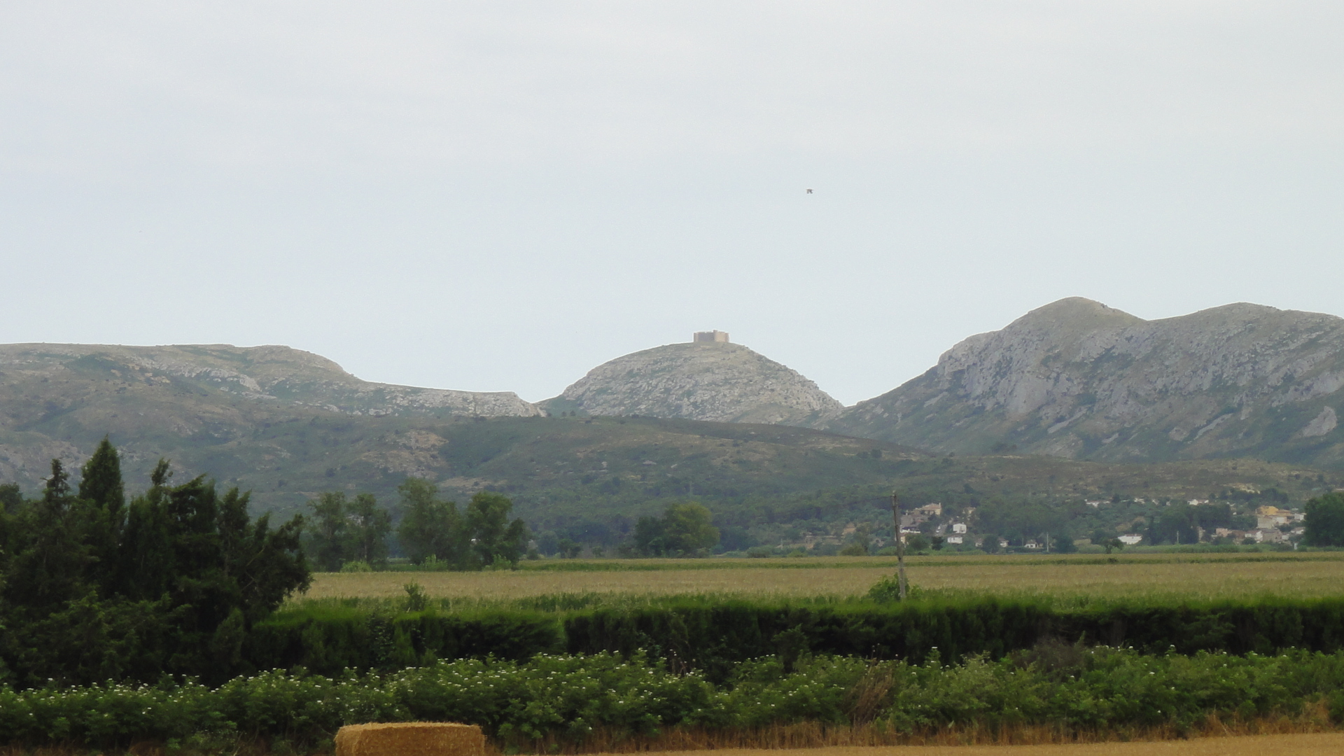 Albons, Baix Empordà, Girona. Preciosas fotos de sus campos